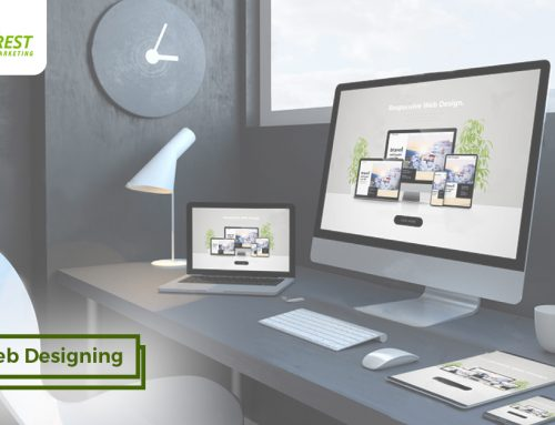 Web Designing 101: 5 Traits Your Website Must Never Have